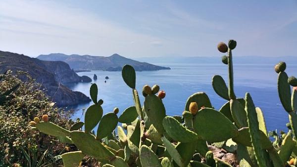 Sicilia-fichi-dindia